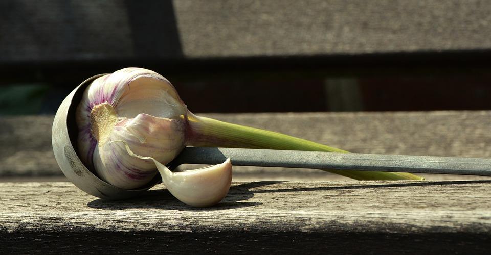 garlic-1605298_960_720