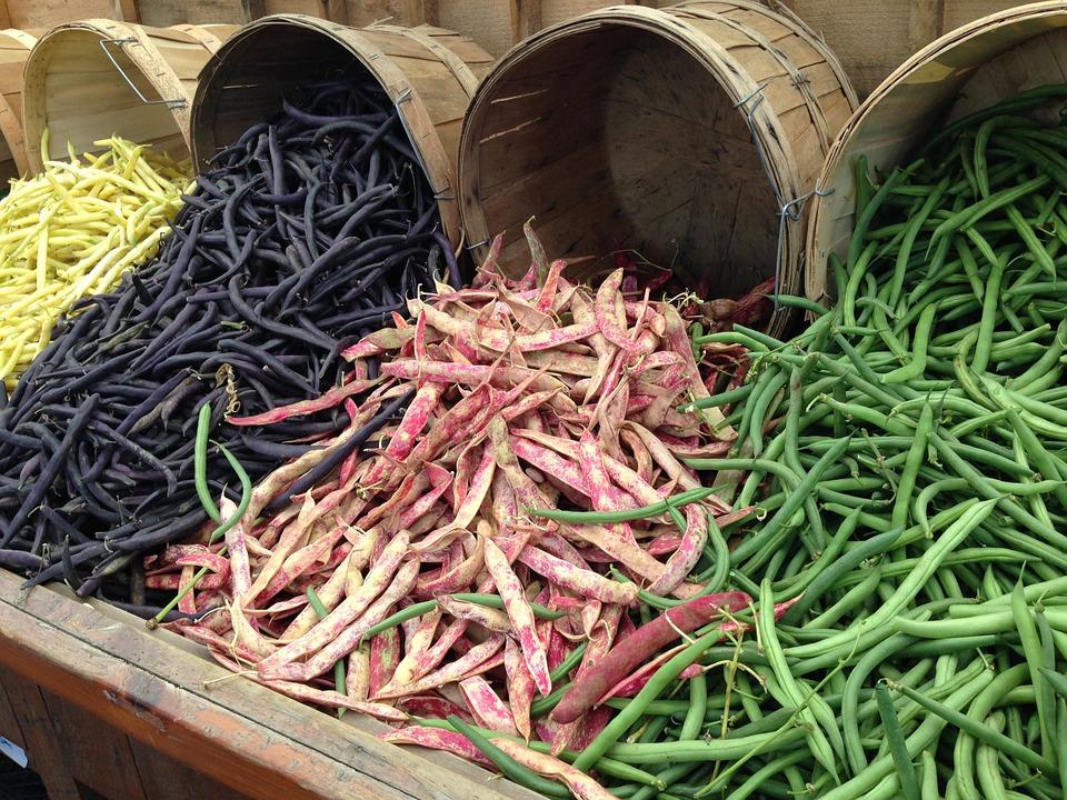 beans-260210_960_720